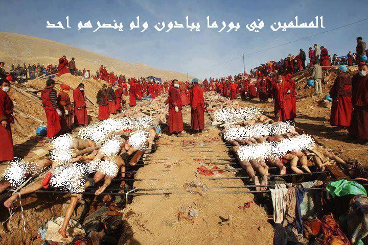 صور مسلمى بورما , معانات المسلمين في بورما