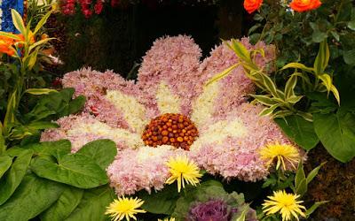 صورة صور طبيعة جميلة جدا , صور من الطبيعة سبحان الخالق