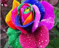 صوره صور طبيعة جميلة جدا , صور من الطبيعة سبحان الخالق