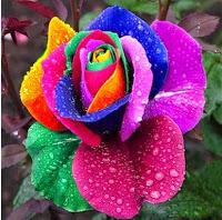 صور صور طبيعة جميلة جدا , صور من الطبيعة سبحان الخالق