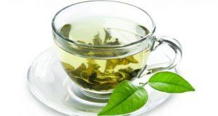 ماهي فوائد الشاي الأخضر, فوائد الشاي الاخضر لصحتك
