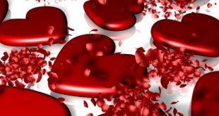 صورة ما هو عيد الحب, قصة عيد الحب