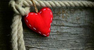 صورة ما هو الفرق بين الحب والعشق, كيف تفرق بين الحب والاعجاب