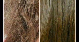 صورة علاج الشعر الناشف والهايش , علاج الشعر الهايش والمموج